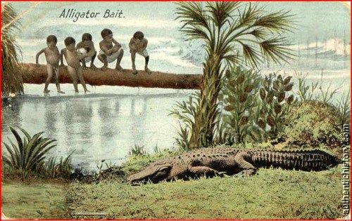 Aligator20bait201909_postcard_quincy_florida-alligator