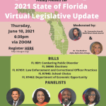 AKAs and Other Local Organizations Collaborate to Present Wrap-Up of Florida's 2021 Legislative Session